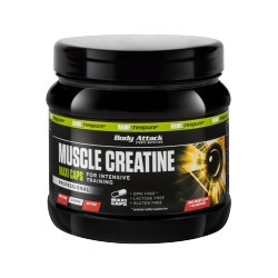 Body Attack, Muscle Creatine 240 Maxi-Caps (Creapure®)